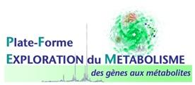 PFEM logo